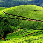 5-south-india-holiday-experiences-that-you-should-not-miss